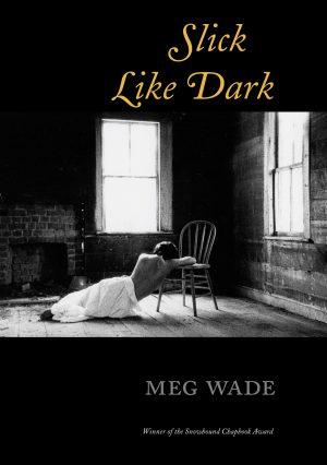 Slick Like Dark, by Meg Wade
